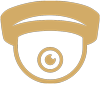 Crime Deterrent Systems icon